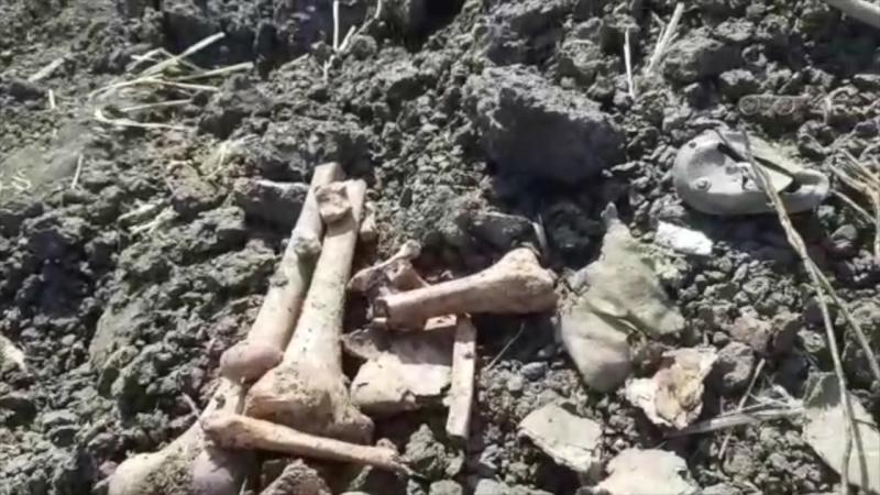 Раскопки и поиск бойцов ВОВ продолжается