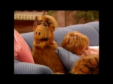 Alf Quote Season 2 Episode 11_Вытащи меня