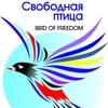 """Конкурс - премия """"Свободная птица"""""""