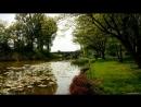 Канал в нашем видео № 3 - Эдуард Асадов.Не привыкайте никогда к любви