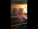 Обзор кухни Игна Тюха