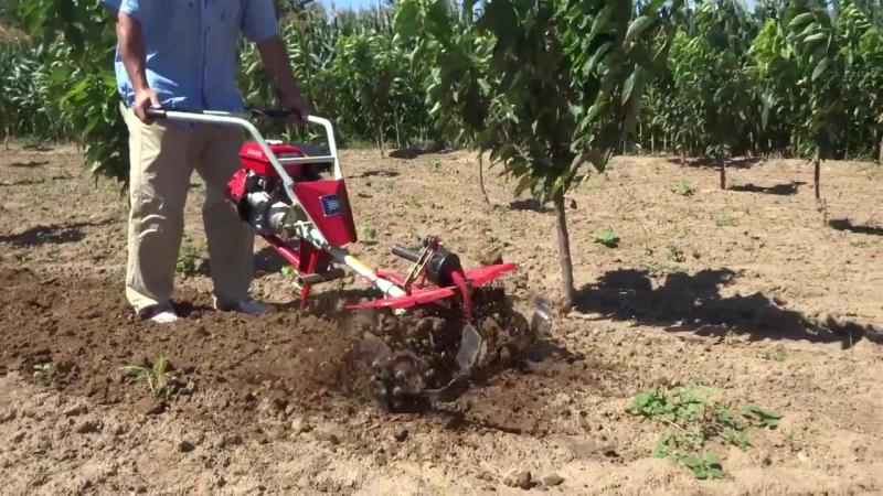 Rotary tiller , power weeder paddy weeder Small Cultivator or Tiller whatsapp- 008615650279607