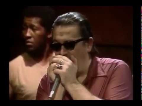 Luther Tucker Charlie Musselwhite - Help Me