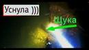 Подводная охота на Щуку! Мое первое видео.