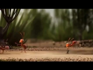 Короткий видео ролик показывающий силу единства