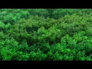 Boruto - 49 Rain.Death