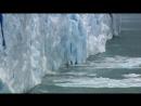 «Водная жизнь 10. Вода-защитница» Познавательный, природа, животные, 2007