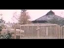 Год телёнка. 1986.(СССР. фильм-комедия)