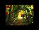Спектакль «Маленький принц» для благотворительного фонда «Неопалимая Купина»