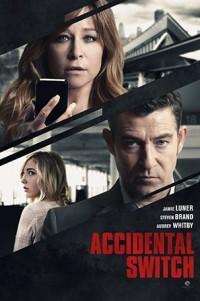 Месть матери (Accidental Switch) 2016 смотреть онлайн