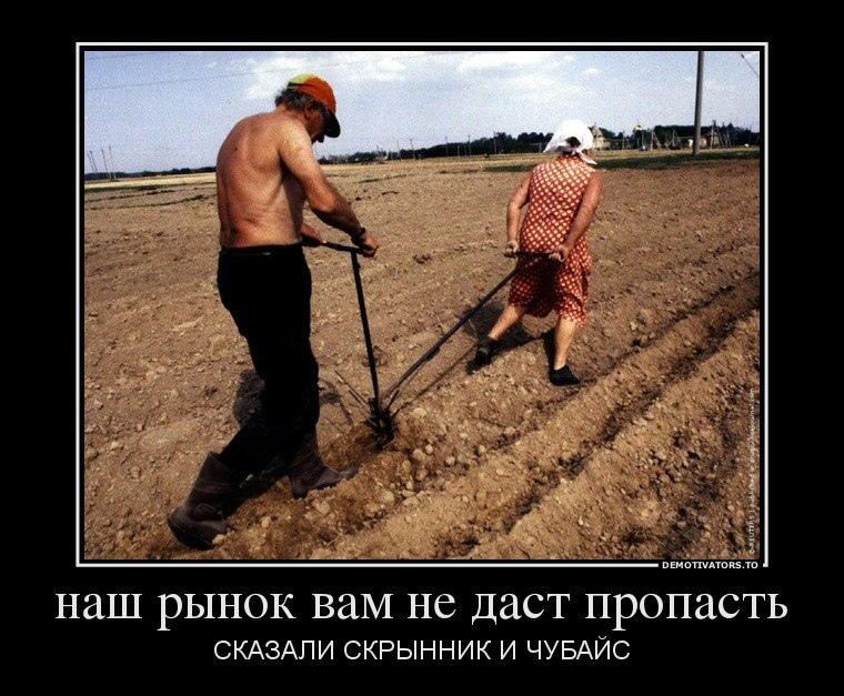 демотиваторы про сельских