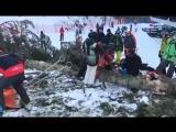 Двадцатиметровая сосна рухнула на сноубордистку на трассе