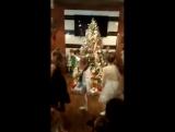 Новогодняя Елка в bar&grill «CRAFT»