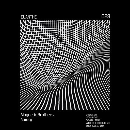Magnetic Brothers альбом Remedy