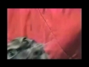 Vtp_video