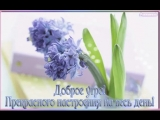 doc178335571_500074365.mp4