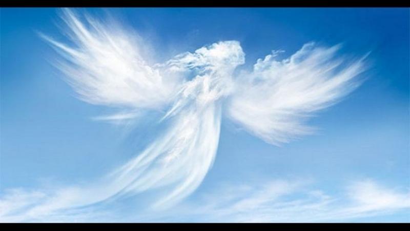 Посвящается памяти моего любимого папочки Сергея Дуброва