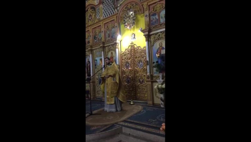Воскресная проповедь о. Александра Клименко в соборе в честь Рождества Пресвятой Богородицы в г. Мукачеве.
