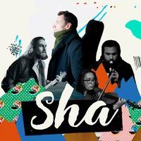 Логотип SHA