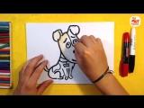 Как нарисовать СОБАКУ, Урок рисования для детей от 3 лет _ Раскраска для детей
