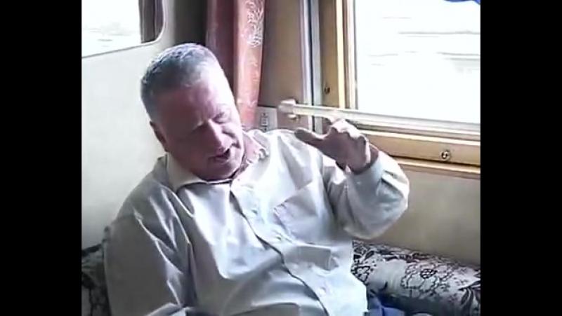 жирик палит
