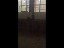 Катаюсь на лошадке