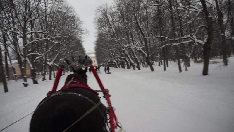 Павловский парк Катание на санях 18 02 2018г