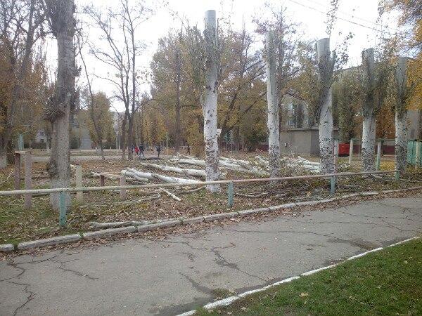 В Армянске в районе 2 школы пилили тополя
