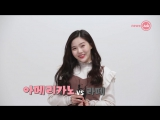 · Interview · 180109 · OH MY GIRL · NewsAde ·