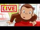 Jorge el Curioso en Español LIVE 🔴 Viento Lleva Jorge | En Vivo | Caricaturas para Niños