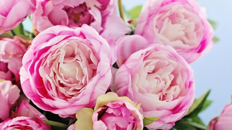 Дорогая наша мама С Днем твоего Рождения МЫ тебя любим