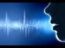 Люди заплакали когда узнали как это работает ЗВУК На что способен голос вселенной Тайны Чапман