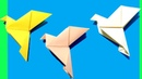 How to make an Origami Dove for Easter Peace Day by Devlin Fox