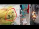 """Мусульмане Индии массово жгут памперсы из-за изображенного на них котенка в котором увидели надпись на арабском имени """"Мухаммад"""""""