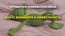 Вырезка из каста Антона Ельницкого