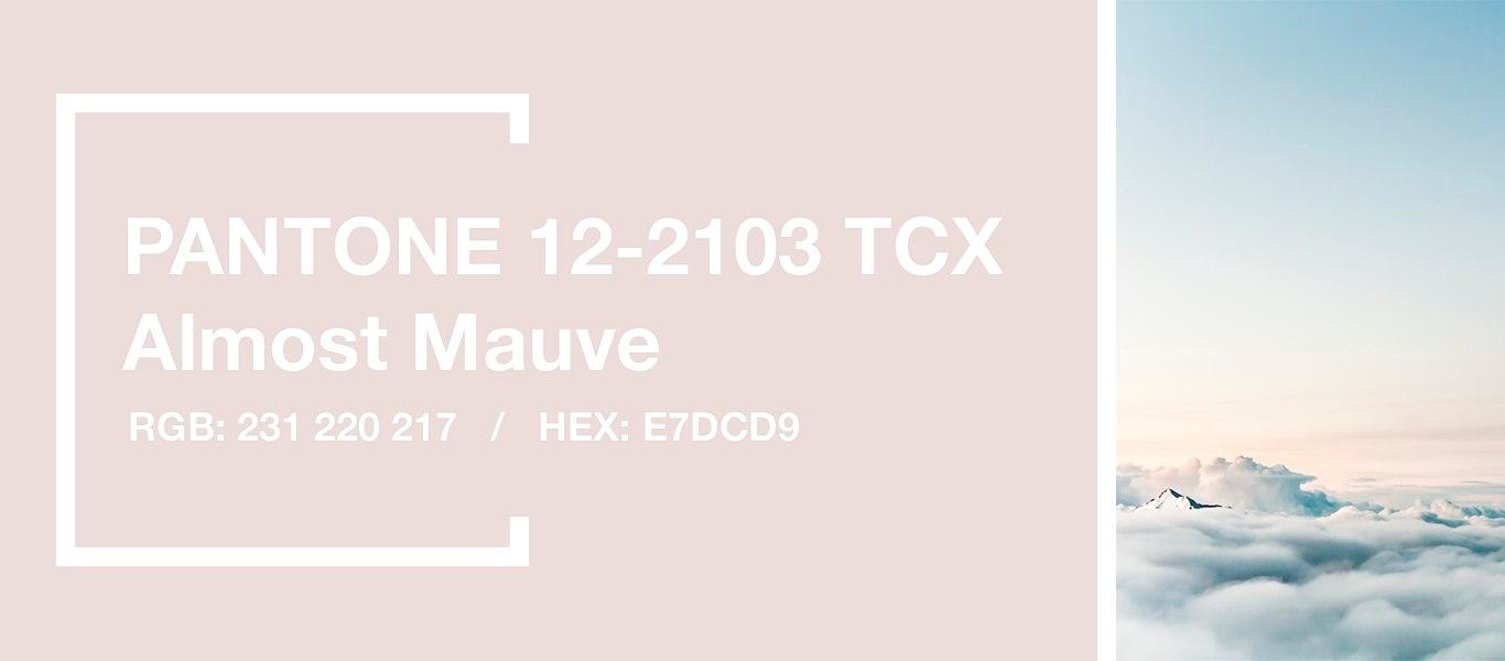 PANTONE 12-2103 Almost Mauve — Едвалиловый