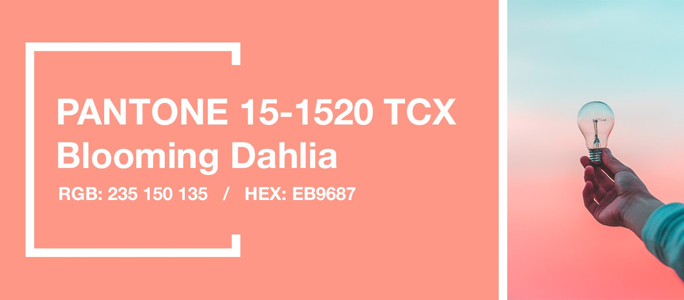 PANTONE 15-1520 Blooming Dahlia — Цветущий георгин