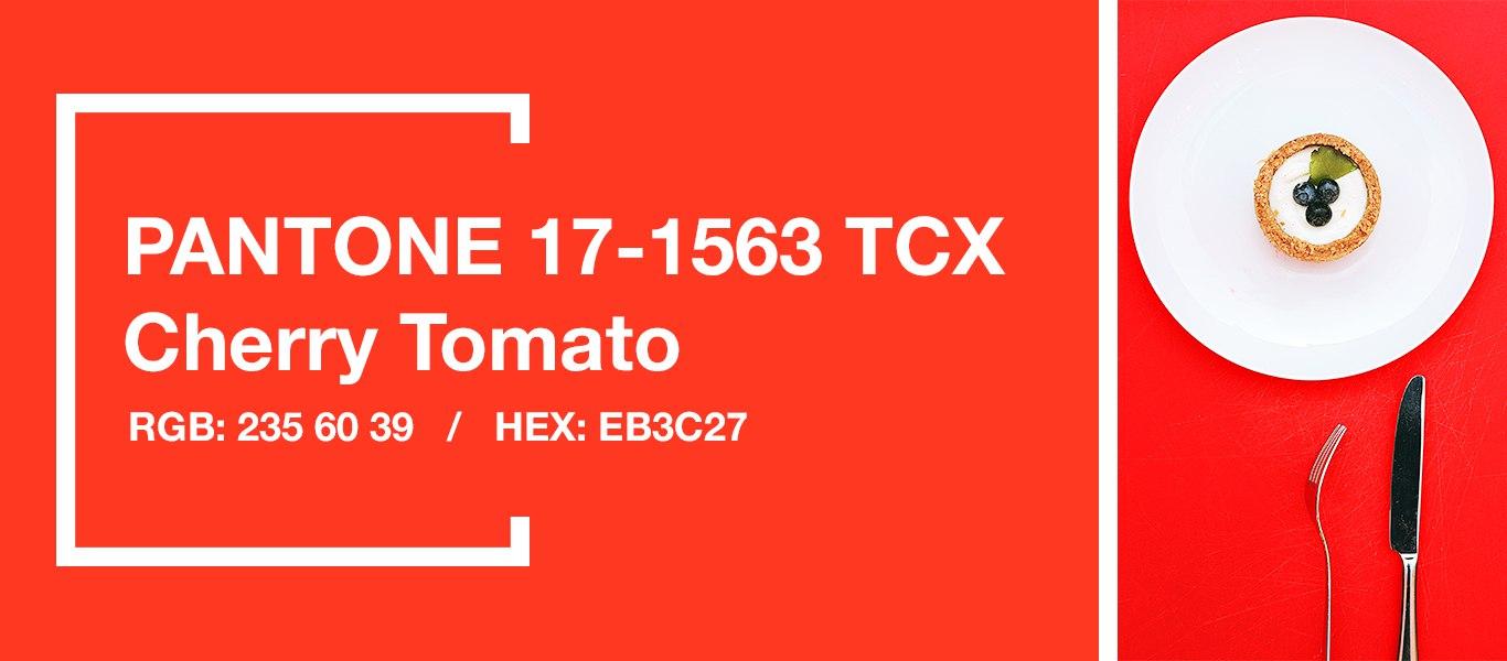 PANTONE 17-1563 Cherry Tomato — Помидор черри