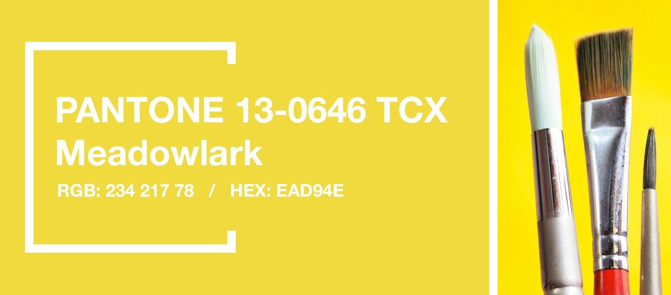 PANTONE 13-0646 Meadowlark — Иволга