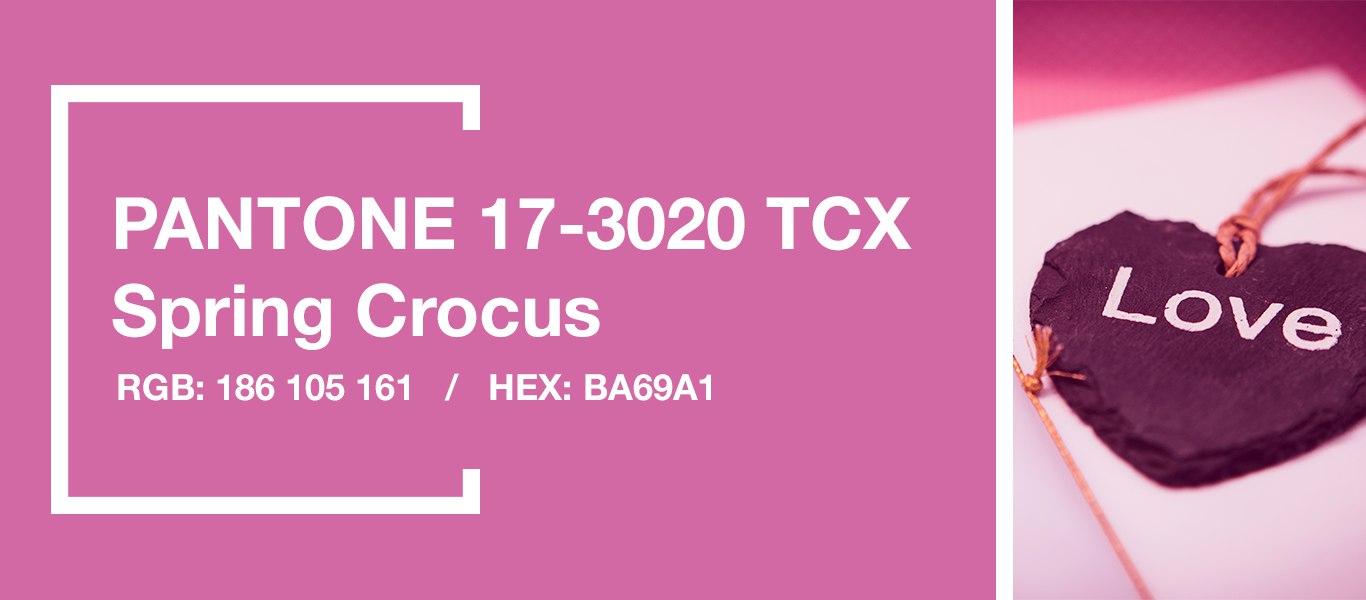 PANTONE 17-3020 Spring Crocus — Весенний крокус