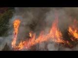 Крупный лесной пожар бушует на юго-западе штата Колорадо