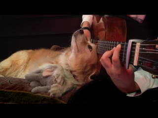 [HQ] Green Day - Boulevard of Broken Dreams (Acoustic Fingerstyle) vk.com/livestudios