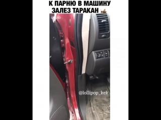 К парню в машину залез таракан