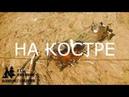 НЕРЖАВЕЙКА VS ТИТАН - тест скорости закипания \ ЛАГЕРЬ У РЕКИ