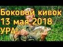 Боковой кивок. Успенское. Москва река. Рыбак Андрей Николаев.