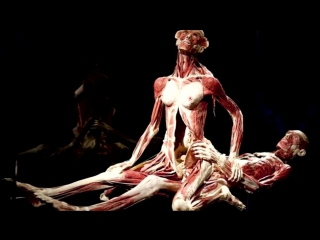 Музей анатомических скульптур Пластинариум- Выставка Гюнтера фон Хагенса