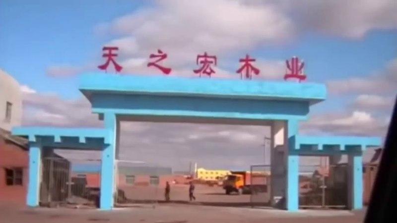 Самое патриотичное видео про Сибирь и Дальний Восток 1