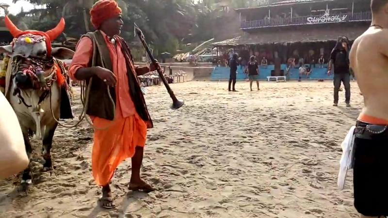 Shiva Valley, Anjuna, Goa