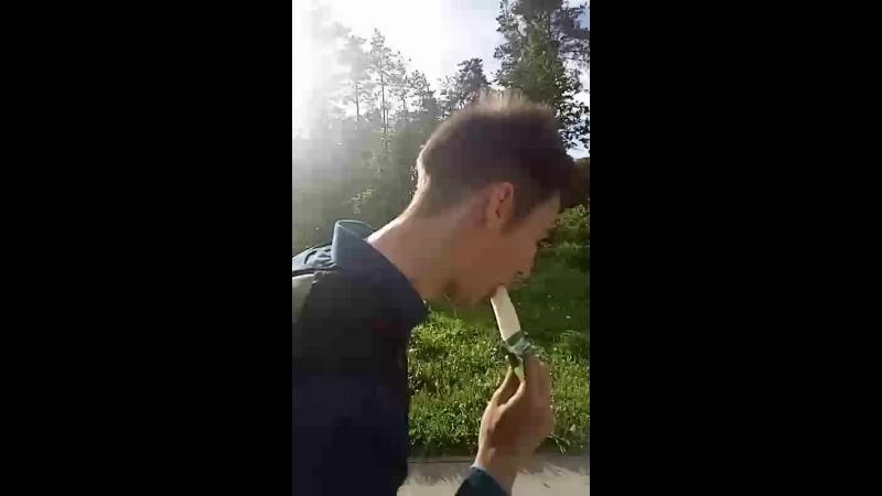 гриша сосет березу