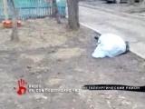 Шел и упал. На троутаре найден мертвым пенсионер